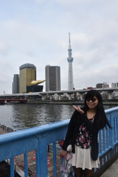 Tokyo Skytree from afar